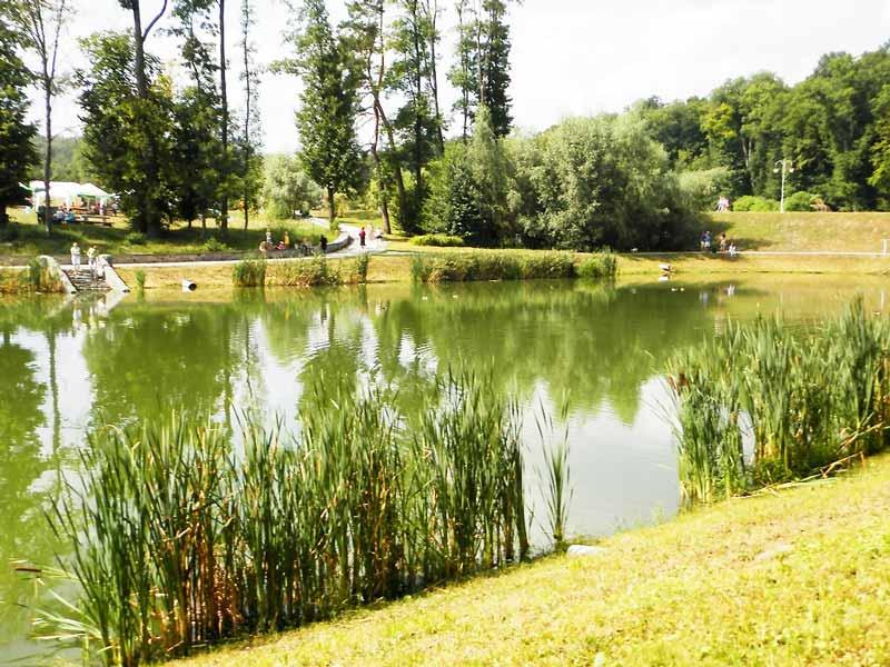 озера у парку Феофанія